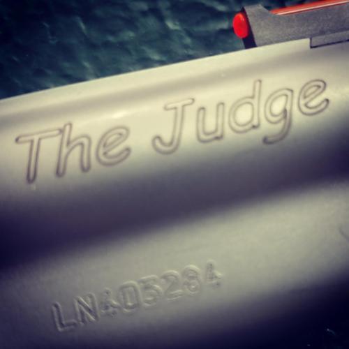Taurus Judge